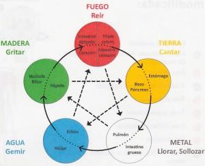 5 Elementos MC